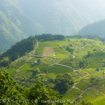 これが岐阜のマチュピチュ!別名「天空の茶畑」は本当に絶景で超絶おすすめ