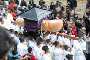 田縣神社の豊年祭で男根(人はそれをちんこと呼ぶ)に狂ってきた